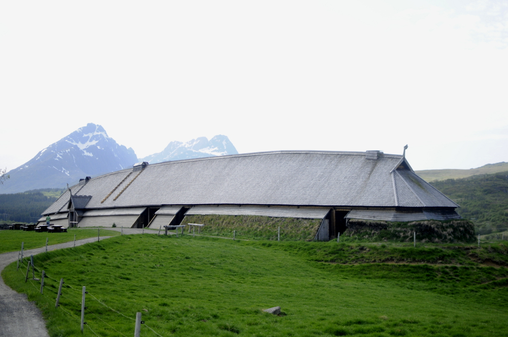 Arctic Vikings