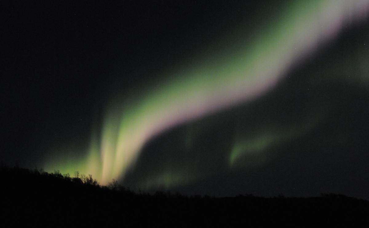 Aurora_Colors_II