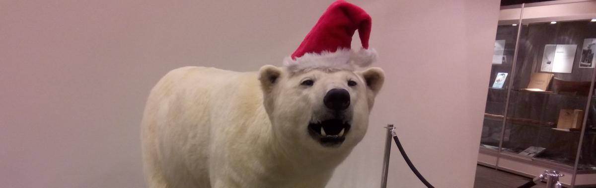 Jul, a Nordic Christmas pt3: The Arctic Santa War